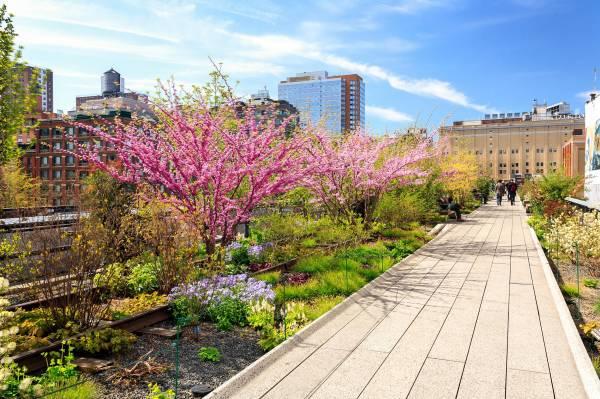 Das Highlight der Schiffsreisenmacher – der High Line Park